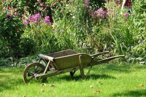 Quand devriez-vous planter des légumes ?