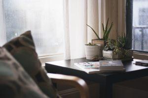 Quelle plante peut on mettre dans une chambre ?