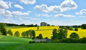 Quelles sont les principales caractéristiques de l'agriculture ?